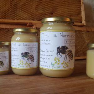 Miel de printemps le pot de 500g