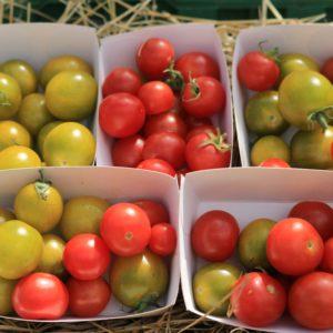 Tomates (apéritif – en barquette de 250g)