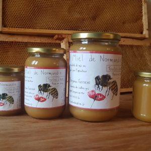 Miel toutes fleurs, le pot de 500g